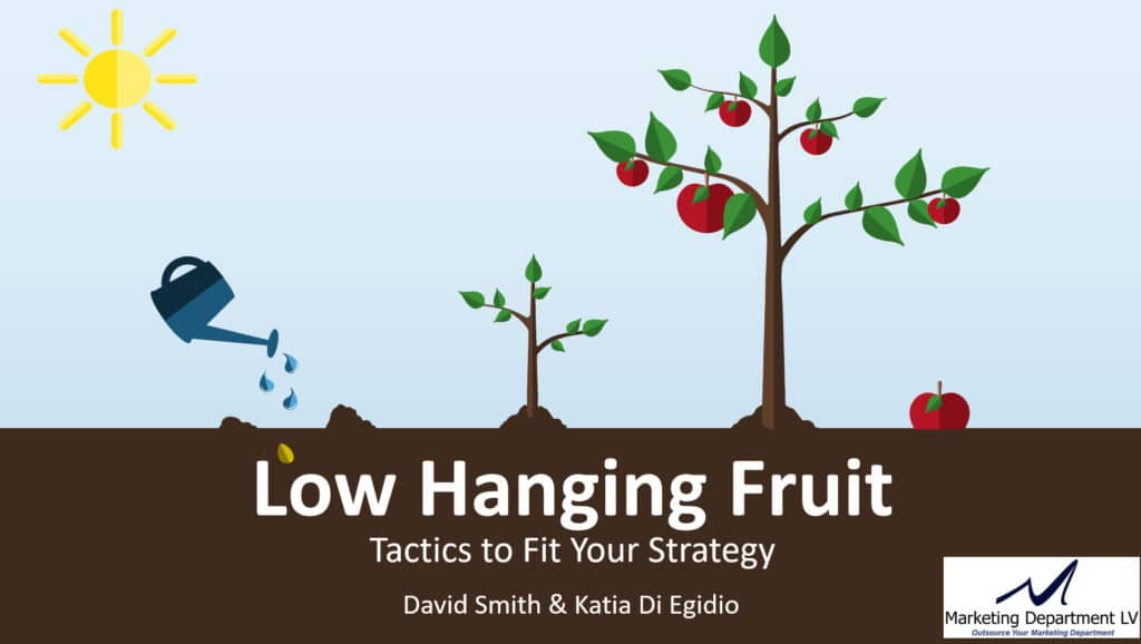 Low Hanging Fruit Tactics to Fit Your Marketing Strategy