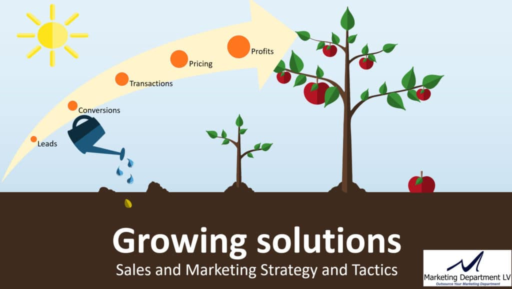 Business Growth Solutions Sales and Marketing Strategy and Tactics