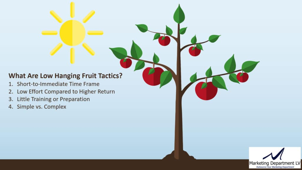 4 Characteristics of Low Hanging Fruit Marketing Tactics